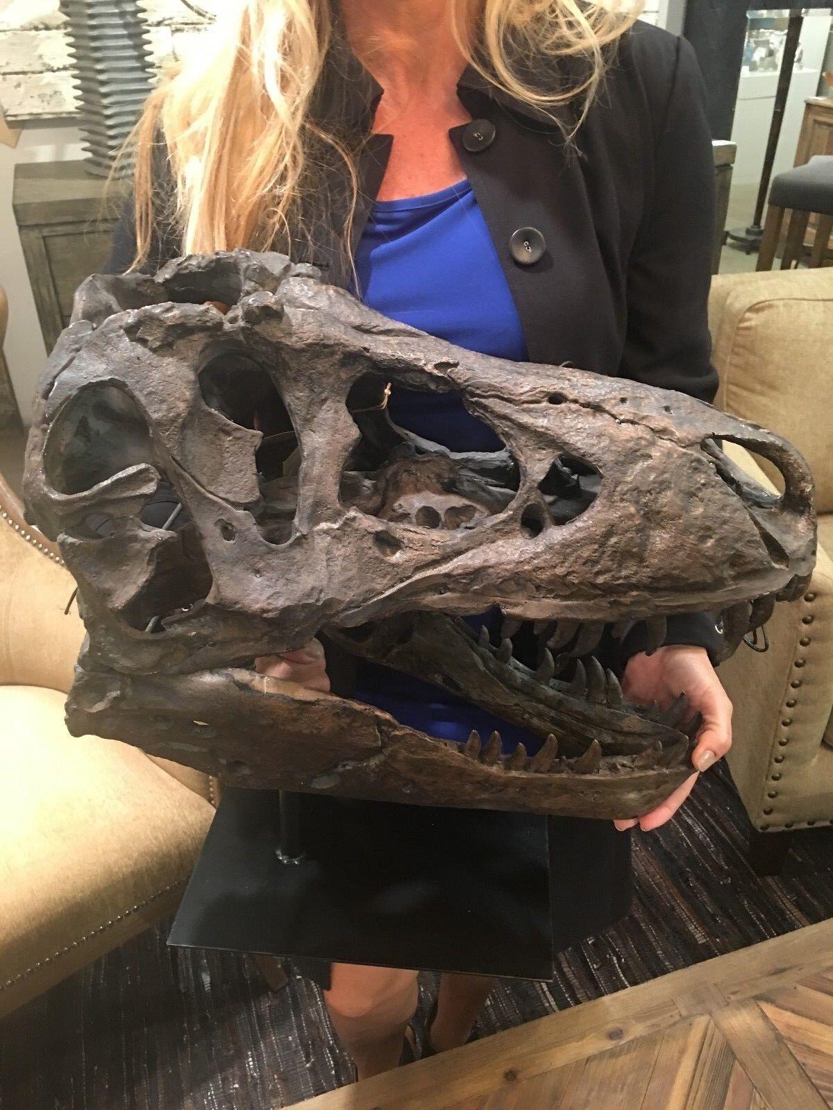 Tiranosaurio Rústico prehistórico Dinosaurio Cráneo Escultura Estatua perpetuamente