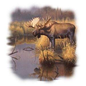 Bull Moose  Moose  Sweatshirt    Sizes//Colors