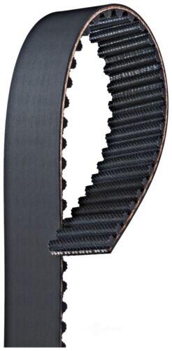 Engine Timing Belt   Gates   T304