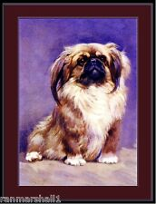 English Picture Print Pekingese Dog Puppy Vintage 10 x 13 inches Poster Art