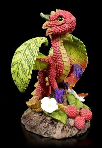 Drachen Figur Raspberry Dragon by Stanley Morrison Drachenjunges Dekostatue