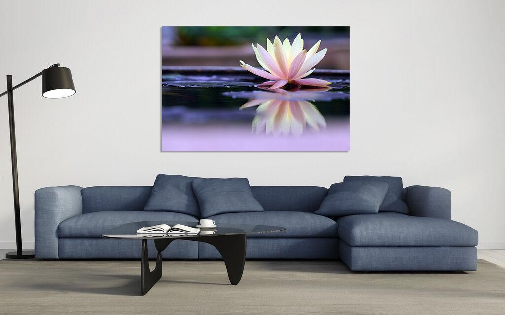 3D Einfach Schön Blaume Fluss 86 86 86 Fototapeten Wandbild BildTapete AJSTORE DE Lemon | Ausgezeichnetes Handwerk  | Wunderbar  | Hochwertige Produkte  de64ba