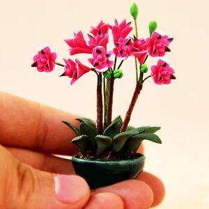 1-12-Puppenhaus-Miniatur-Staffelei-Topfpflanze-Blumendekoration-Traumhaus-NEUHOT