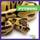 Pythons by Cari Meister (Hardback, 2015)