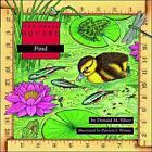 Pond by Patricia J. Wynne, Donald M. Silver (Paperback, 1997)