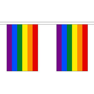 Rainbow Giant Bunting 30 Large Flags 18 25m Gay Pride Flag
