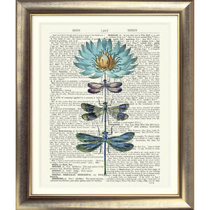 ART-PRINT-ORIGINAL-ANTIQUE-BOOK-PAGE-Vintage-Dictionary-Dragonfly-Flower-VINTAGE