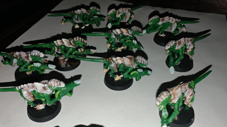 WARHAMMER 40K Tyranids 10 Tyranid Termagants devourers D  painted