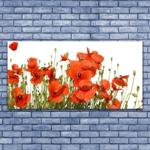 Acrylglasbilder Wandbilder Druck 140x70 Mohnblumen Pflanzen