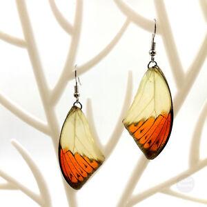 New Real Butterfly Wing Earrings Handmade Jewelry Dangle Drop Resin Earring #N04
