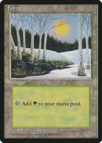 A Ice Age NM-M Basic Land MAGIC THE GATHERING MTG CARD ABUGames Forest