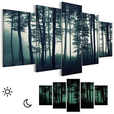 Nachleuchtende BILDER Landschaften Natur LEINWAND Wald WANDBILDER  Nacht BILD