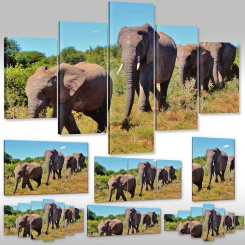 Leinwandbild Canvas Print Wandbild Kunstdruck Tiere Elefanten Savanne in Afrika
