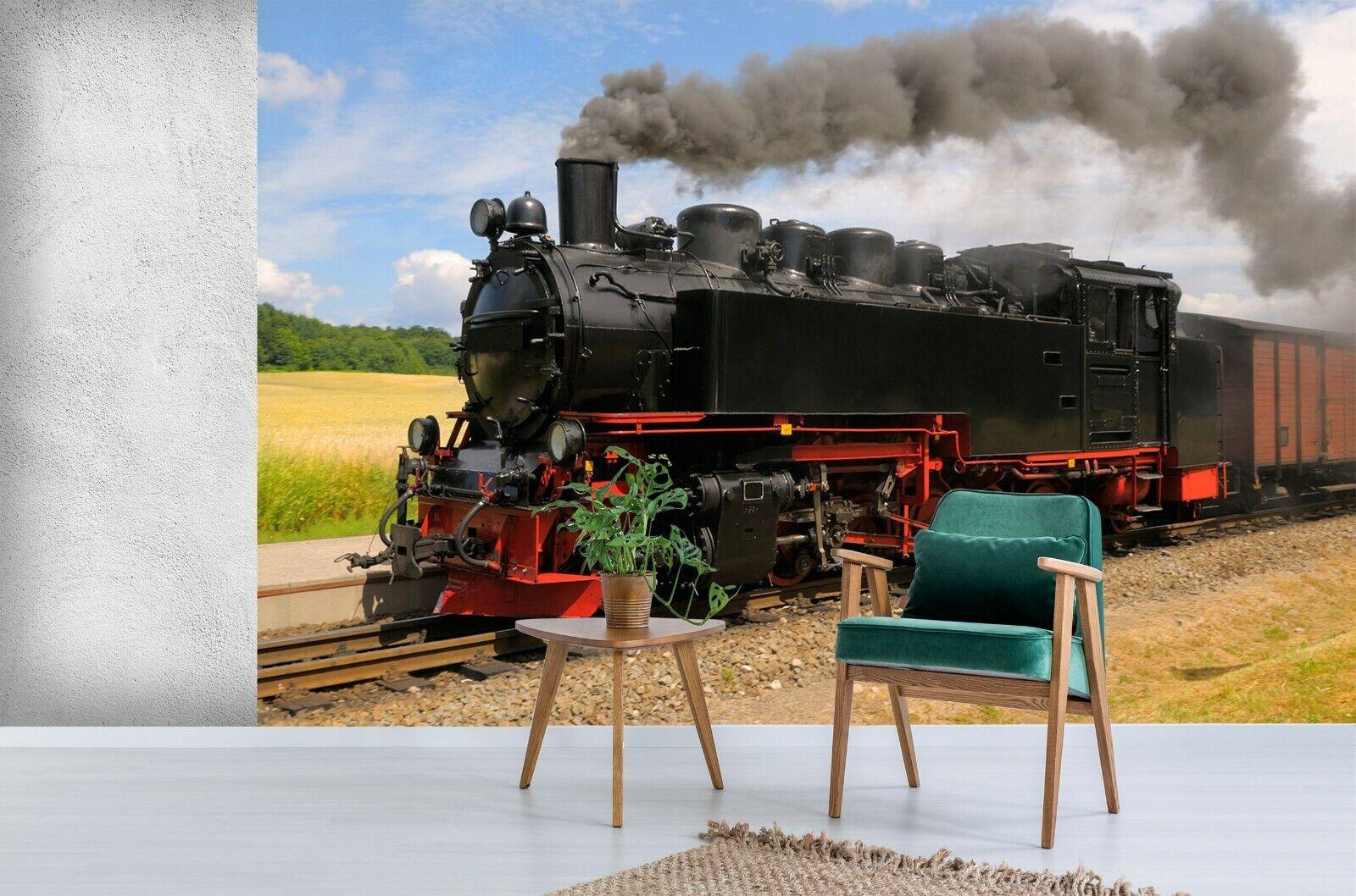 3D Train Smoke N838 Transport Wallpaper Mural Self-adhesive Removable Amy