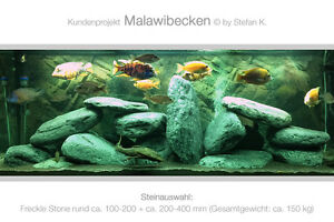 freckle stone rund deko aquarium steine malawi gestaltung schiefer kies ebay. Black Bedroom Furniture Sets. Home Design Ideas