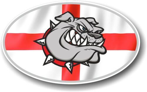 St Georges Croix Drapeau Angleterre /& Bulldog Ovale Vinyle Autocollant Voiture Décalque 100x60mm