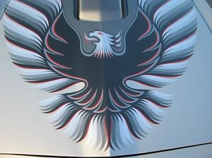 1979-Pontiac-Trans-Am-10th-Anniversary-Silver-Decals-Ultimate-Kit-79