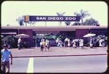 Original Slide SAN DIEGO ZOO 1960s Front Entrance Admission Gate