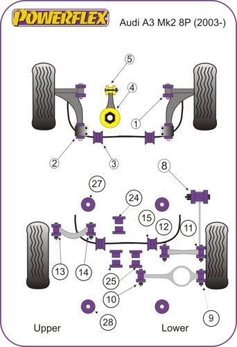 Seat León Mk2 08 POWERFLEX FRONT ENGINE MOUNT FRONT LOWER LARGE Fast Road 1P
