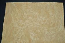 Ash Burl Raw Wood Veneer Sheet 125 X 185 Inches 142nd G7868 2
