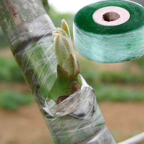 2cmx100m Pfropfen Klebeband Stretchable selbstklebend für Garten Baum Sämli UE