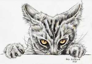 Hiding-Nose-watercolor-cat-original-animal-drawing-painting-wild-kitty-pet-art