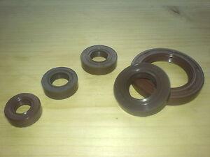 Viton® 6x16x5 mm AS = WAS = DASL = TC 1 Wellendichtring  Simmerring FPM FKM