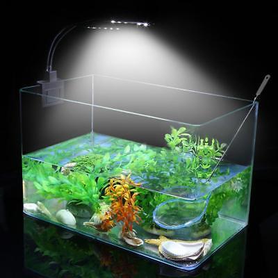 Tanque Acuario de Peces LED con Clip Lámpara 220V Plantas crecen iluminación