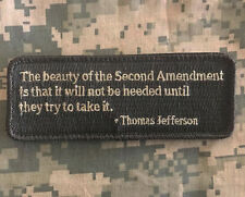 THE BEAUTY OF THE SECOND AMENDMENT TRY TO TAKE IT ACU LIGHT HOOK MORALE PATCH