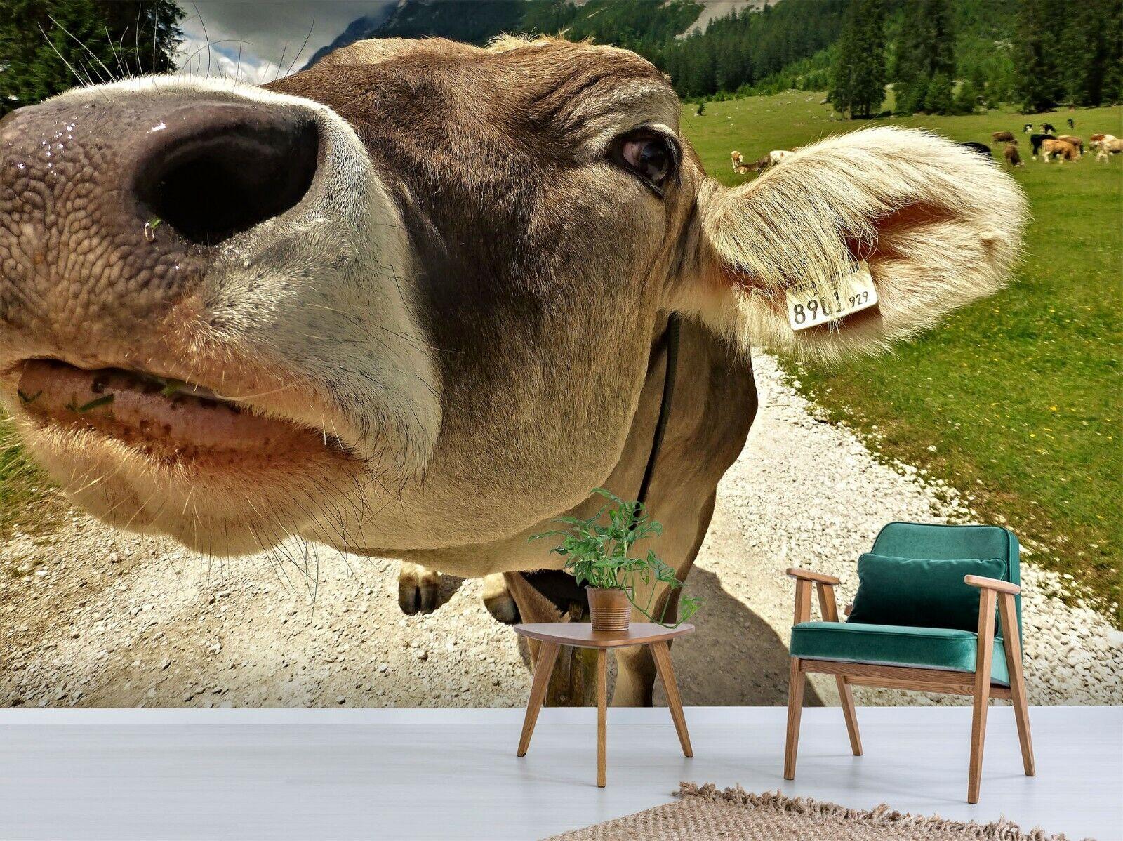 3D Süß Kuh M94 Tier Tapete Wandbild Selbstklebend Abnehmbare Angelia