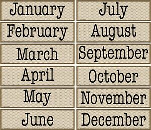 TCR 8469 Rustic Chicken Wire Months of the Year Calendar Headers Teacher Supply