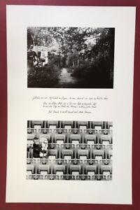 Edmund cupola, la storia del bosco (...), la stampa offset, 1983, firmato a mano