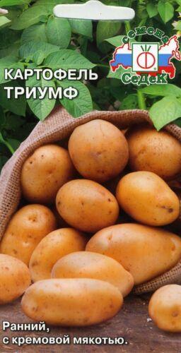 """Pommes de terre /""""Triomphe/"""""""