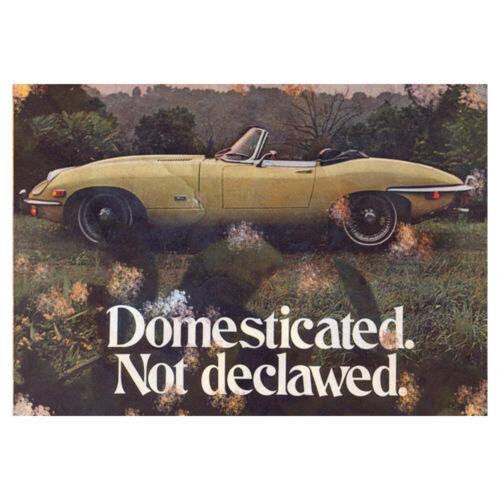 Jaguar E Type Advertising Metal Jag Sign Vintage Garage Workshop Shed Plaque