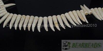 White Howlite Turquoise Stick Animal Tooth Shape Loose Spacer Beads 16'' Strand