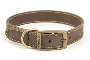 Ancol-quality-bridle-leather-dog-collar-lead-Blue-Brown-Grey-XS-S-M-L
