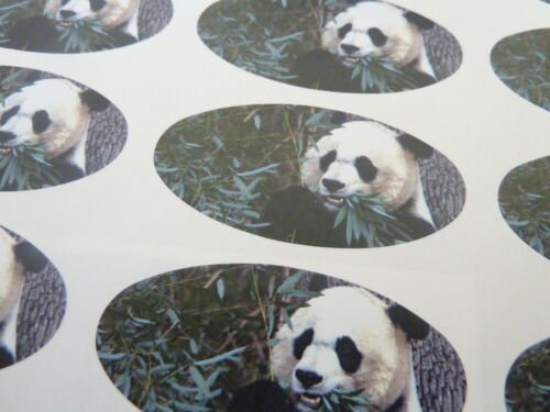 Wildlife Stickers for Gift Wrap Envelopes Animal Panda Oval Seal Labels Cards
