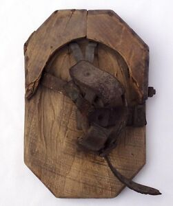 A bog shoe: used on horses for extra support for logging in swamps or snow.
