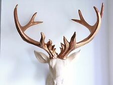 LARGE Unique decoration Stag Head Taxidermy Deer 'COPPER DREAM'