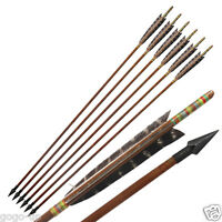 6 Eagle Pattern Turkeys Feather Hunting Bamboo Arrows Recurve Bow Mitsubishi Tip