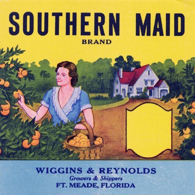 Ft. Meade Florida Southern Maid Orange Citrus Fruit Crate Label Art Print