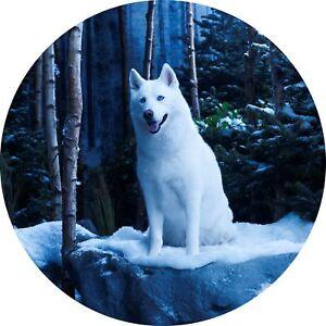 4x4-Spare-Wheel-Cover-4-x-4-Camper-Camper-Graphic-Vinyl-Sticker-Wolves-110