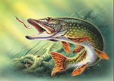 Pike Pesca Imagen Poster Print AMK515