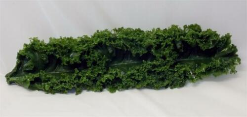 "12 Pack. Plastic Kale Strips For Salad Bar Display Fake Foods 12/"" Replica Kale"