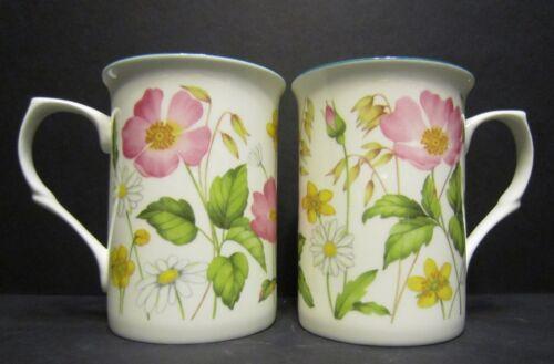 6 conjunto de seis Hedgerow Wrap Porcelana Fina Tazas Tazas Vasos