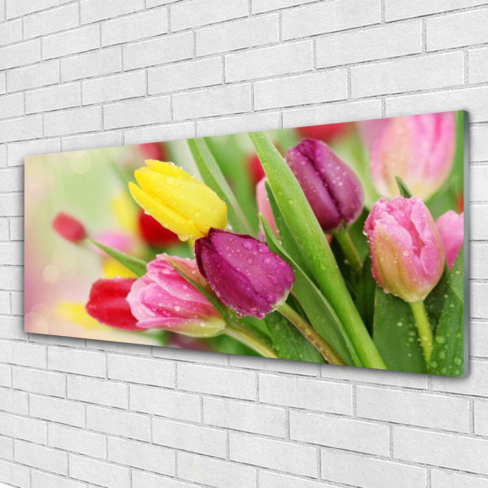 Tableau murale Impression sous verre 125x50 Floral Tulipes
