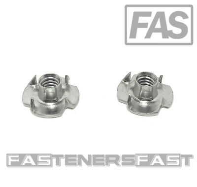 25 18-8 Stainless - Pieces T-NUT Stainless Steel 1//4-20x3//8 4 Prong Tee Nuts 1//4-20 Thread 3//8 Barrel Length
