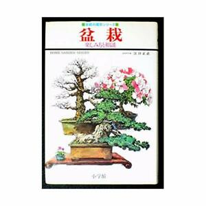 Bonsai-enjoy-and-consultation-home-of-gardening-series