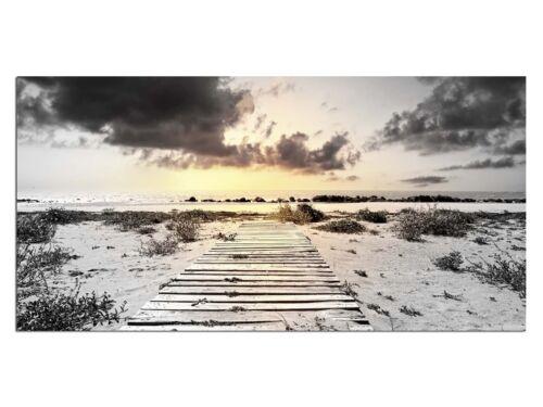 HD générons eg4100501069 plage mer du Nord effet 100 x 50 CM la fresque paysage
