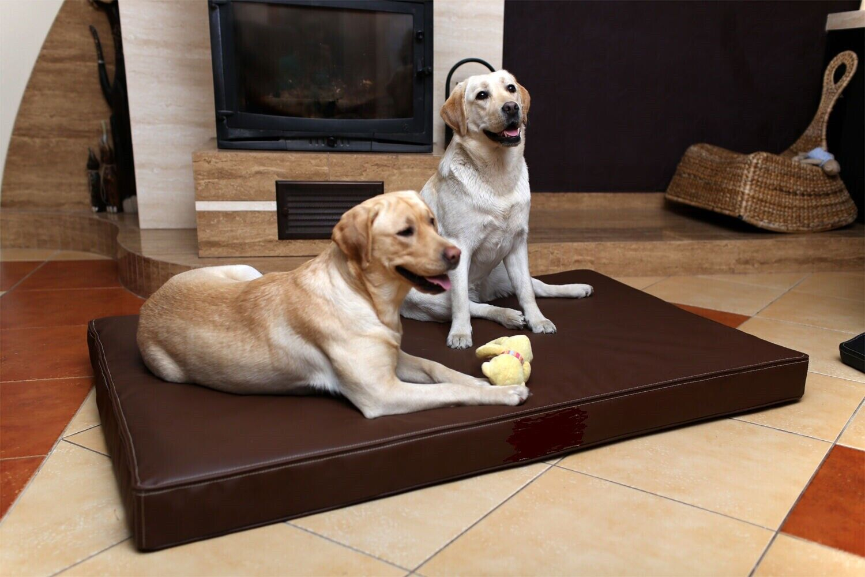 Cuccia Materasso letto cuscino similpelle HAPPYNESS per cani L 125x75cm